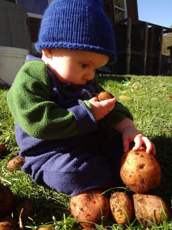 nyana discovers potatoes